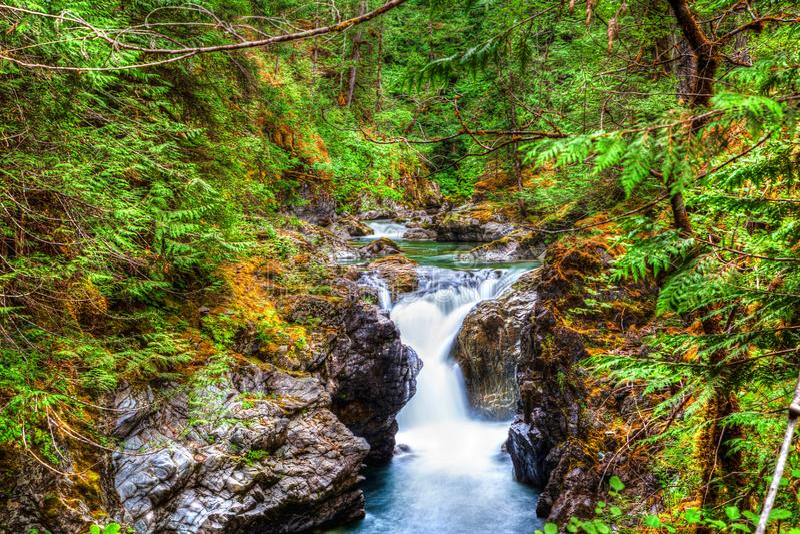 Pouco Qualicum cai na ilha de Vancôver, Canadá imagens de stock royalty free