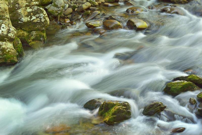 Pouco rio, Great Smoky Mountains imagens de stock royalty free