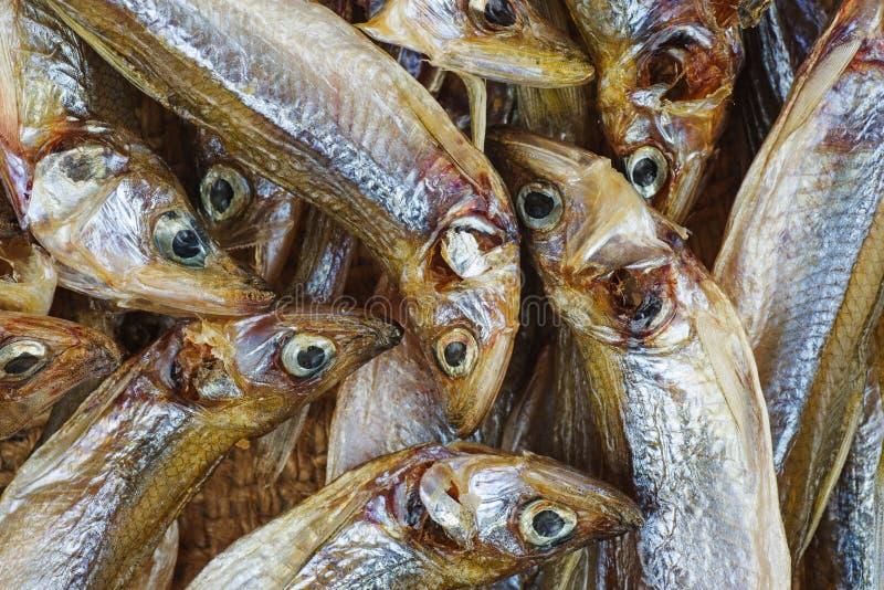 Poucos curaram peixes do smelt europeu foto de stock