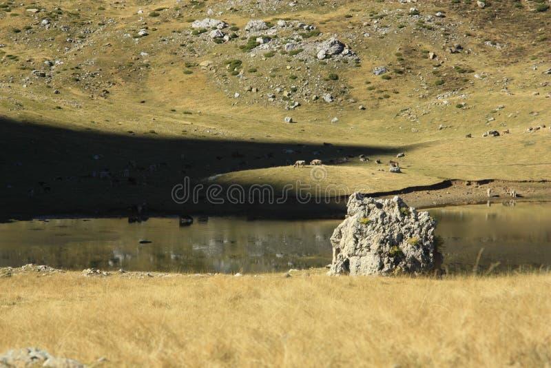 Poucos lago e montanhas em Pyrenees Tramacastilla de Tena foto de stock royalty free