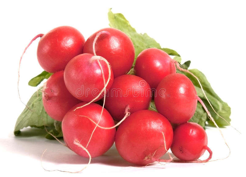 Poucos radishes crus fotografia de stock royalty free