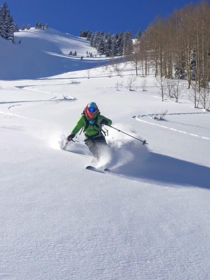 Poudre de champagne de ski images libres de droits