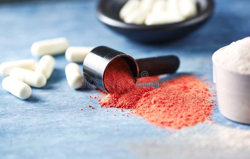 Poudre de créatine, scoop des capsules de protéine de lactalbumine et de taurine Nutrition de sport image stock