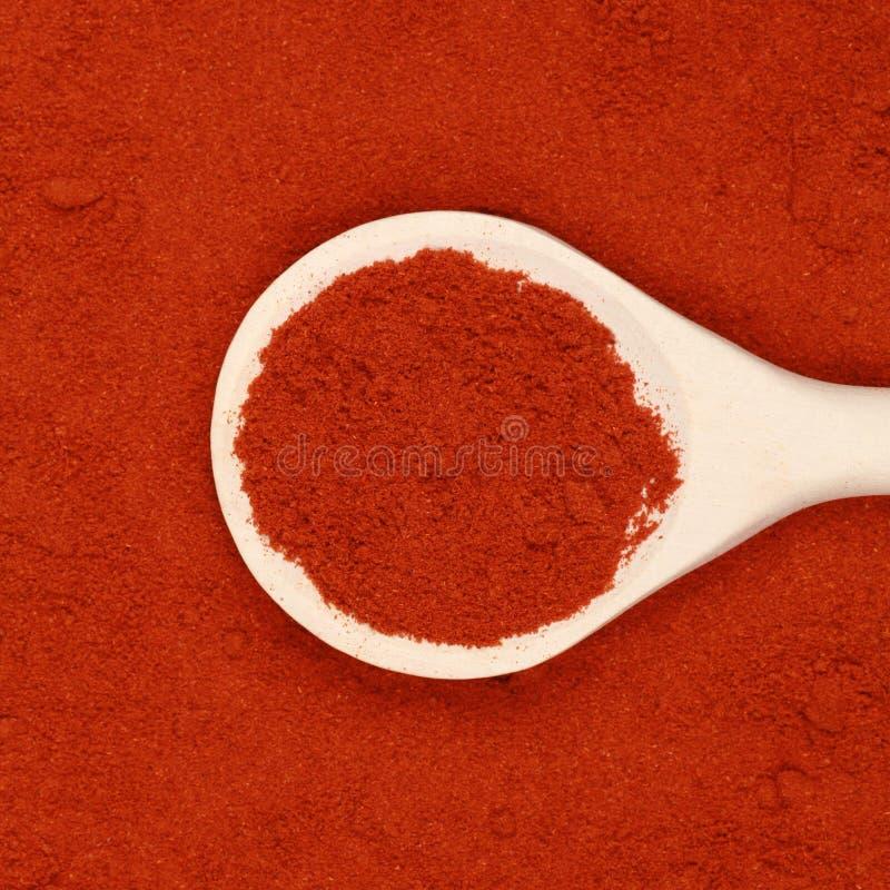 Poudre de paprika image stock