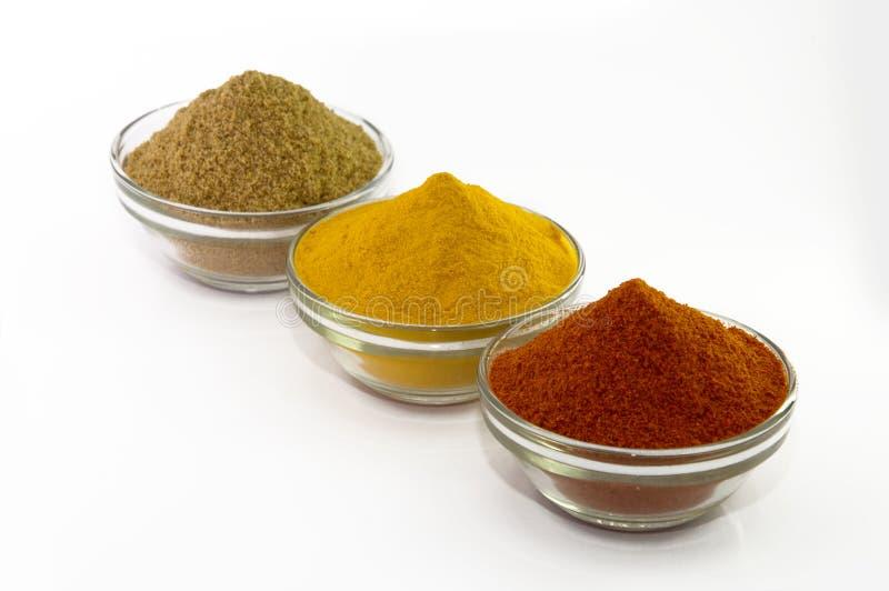 Poudre de poudre de piments, de poudre de safran des indes et de coriandre dans la cuvette photo stock