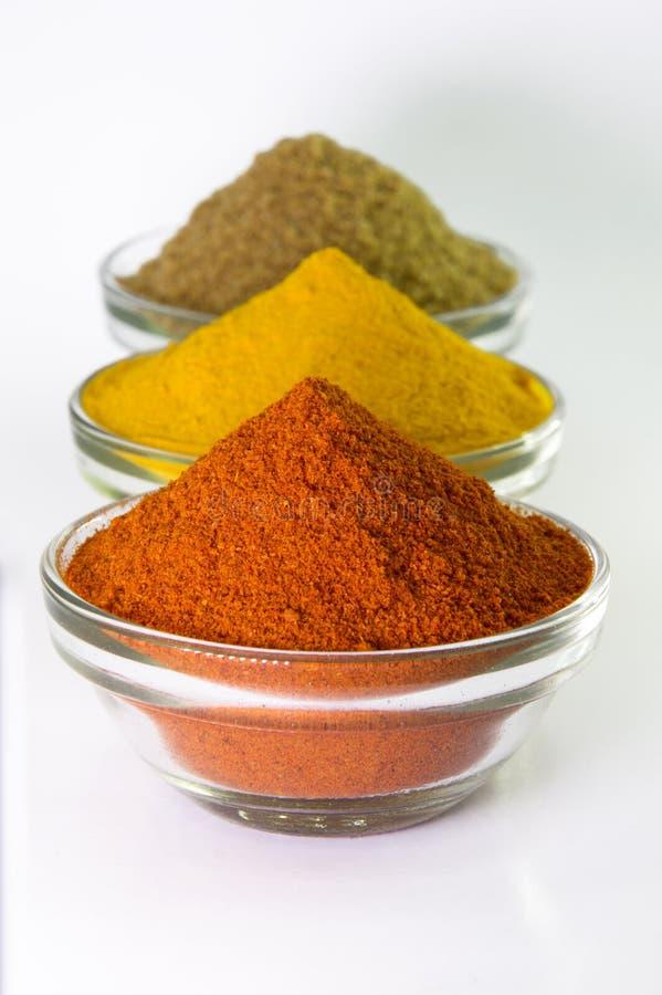 Poudre de poudre de piments, de poudre de safran des indes et de coriandre dans la cuvette photos libres de droits