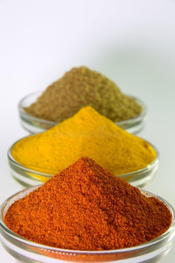 Poudre de poudre de piments, de poudre de safran des indes et de coriandre dans la cuvette image libre de droits