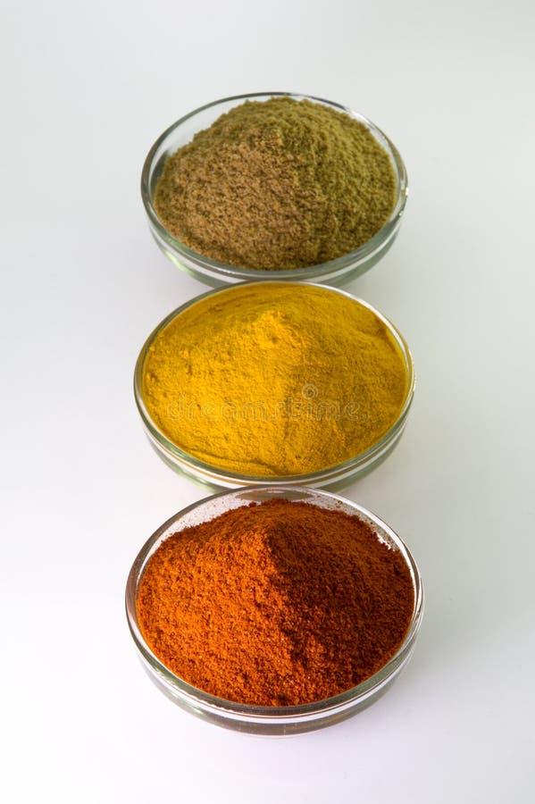Poudre de poudre de piments, de poudre de safran des indes et de coriandre dans la cuvette photographie stock