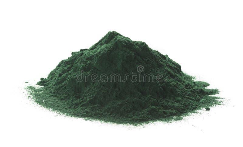 Poudre de Spirulina au-dessus du fond blanc photo libre de droits