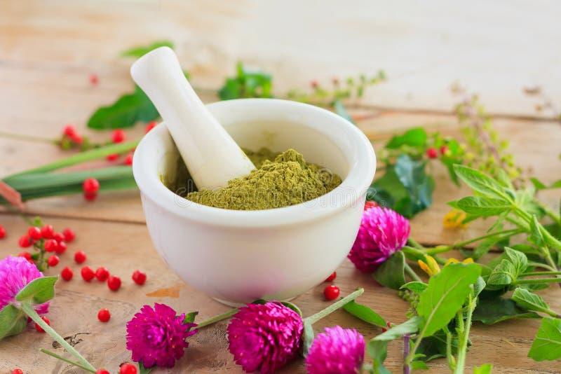 Poudre fraîche d'herbes dans le mortier, médecine parallèle images stock