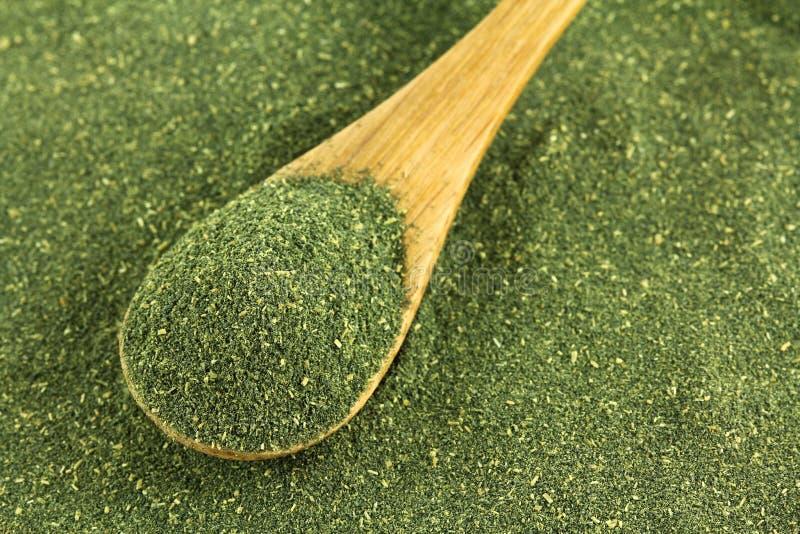 Poudre japonaise de thé vert, thé de Matcha images libres de droits