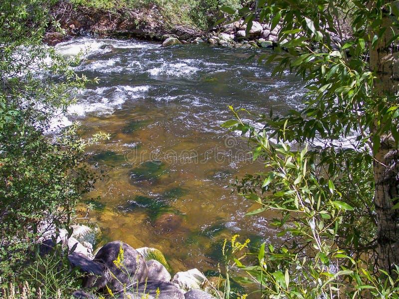 Poudre kanjon, Coloradoflodensikt royaltyfria foton