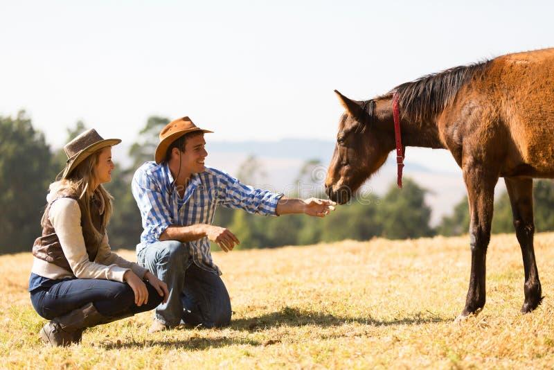 Poulain de cow-girl de cowboy photographie stock