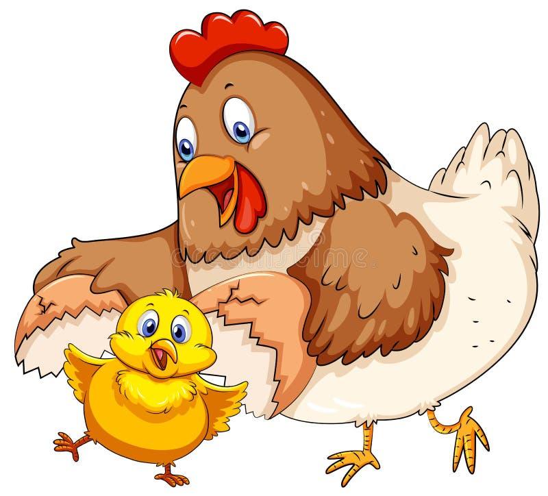 Poule de mère et petit poussin illustration libre de droits