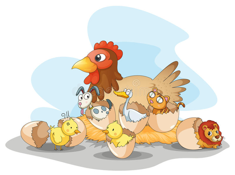Poule et animaux illustration libre de droits