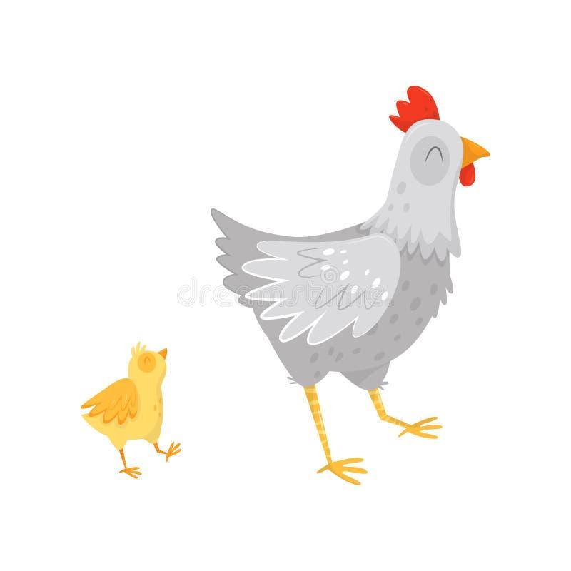 Poule grise marchant avec le petit poussin jaune Personnages de dessin animé des oiseaux de ferme Volaille domestique Vecteur pla illustration stock