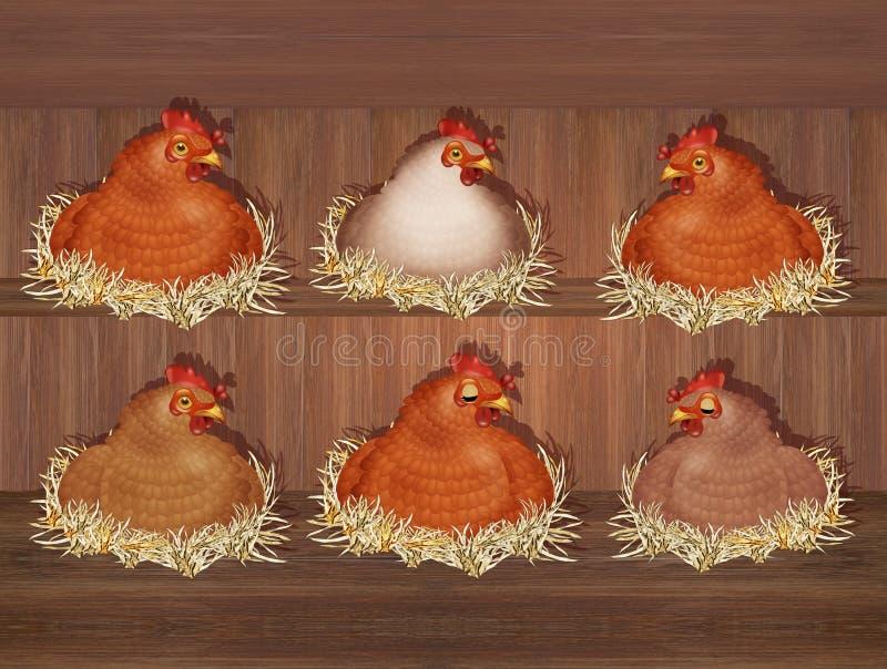 Poules dans la maison de poule illustration libre de droits