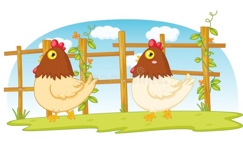 poulet illustration stock