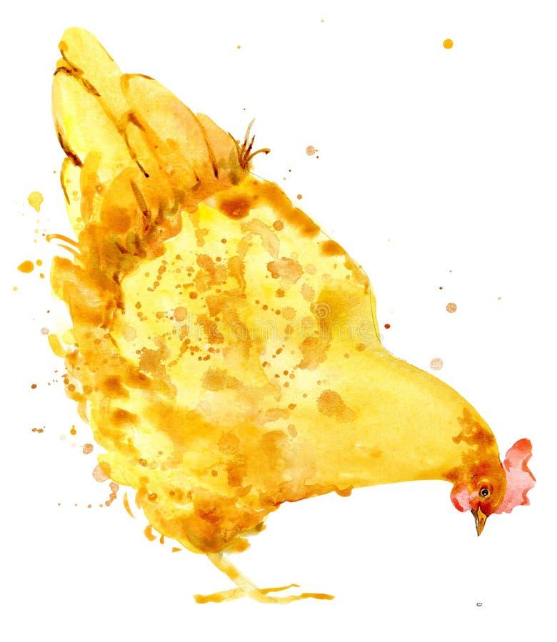 poulet Aquarelle de poulet