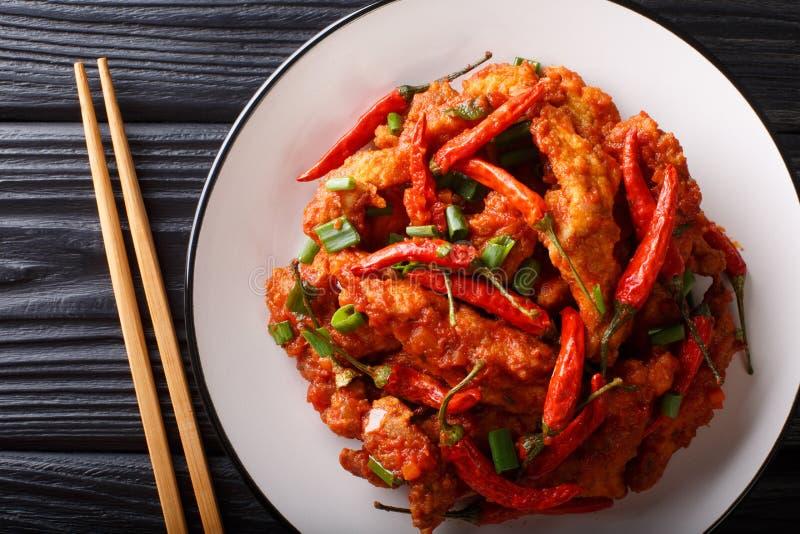 Poulet chinois de nourriture en plan rapproché de sauce à Schezwan d'un plat vue sup?rieure horizontale photos libres de droits