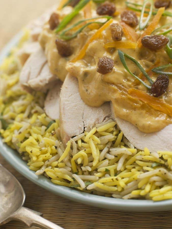 Poulet de couronnement et salade de riz photographie stock