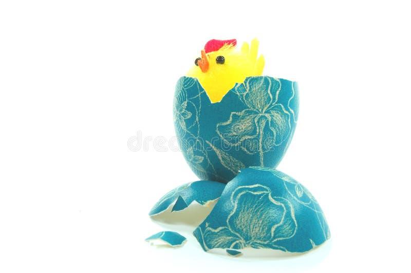 Poulet de Pâques photos stock