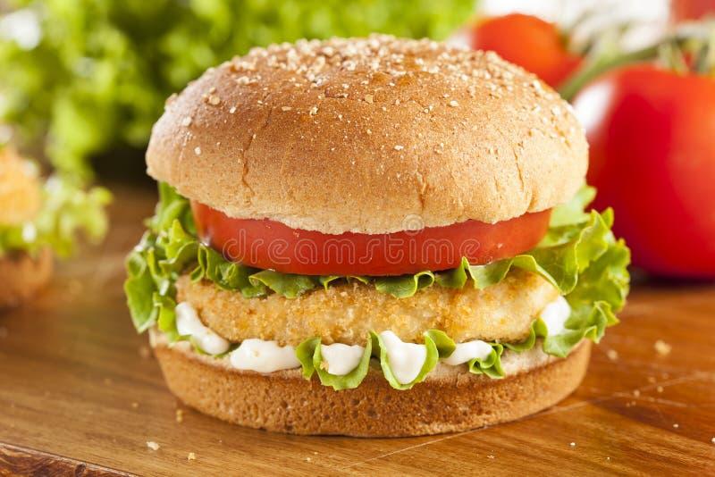 Poulet pané Patty Sandwich sur un petit pain photo libre de droits