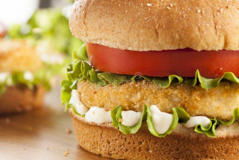 Poulet pané Patty Sandwich sur un petit pain photo stock