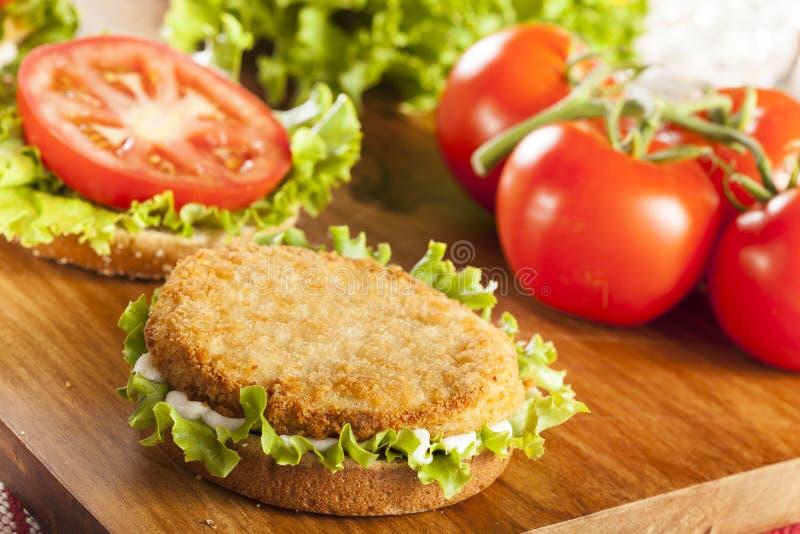 Poulet pané Patty Sandwich sur un petit pain photographie stock libre de droits