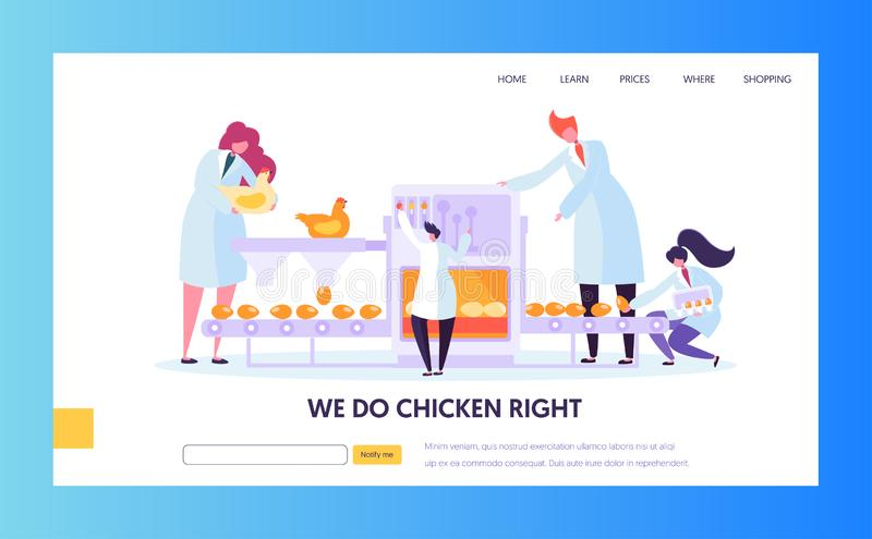 Poultry Factory. Chickens Laying Eggs on Conveyor Belt, Worker Collect them to Package. Metaphor of Series Production Farm Line royalty free illustration