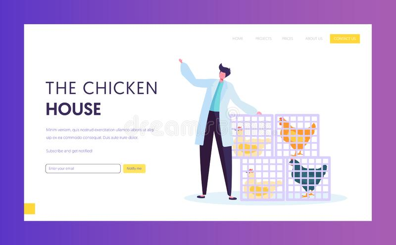 Poultry Farm in Wearing White Robe Standing near Baskets with Alive Chickens. Food Industry, Hen Eggs, Meat Feathers Production royalty free illustration