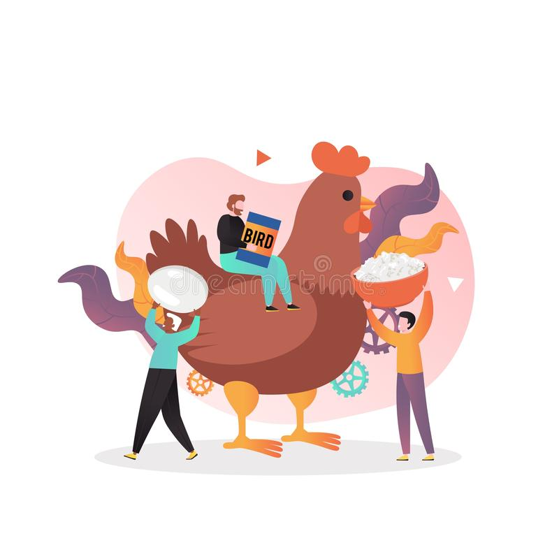 Poultry farming vector concept for web banner, website page. Micro male characters feeding huge chicken, vector illustration. Poultry farming, organic eggs, meat stock illustration