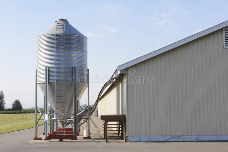 Download Poultry Feed Bin stock image. Image of animals, poultry - 26518155
