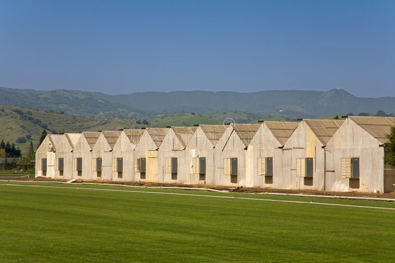 Poultry Houses royalty free stock images