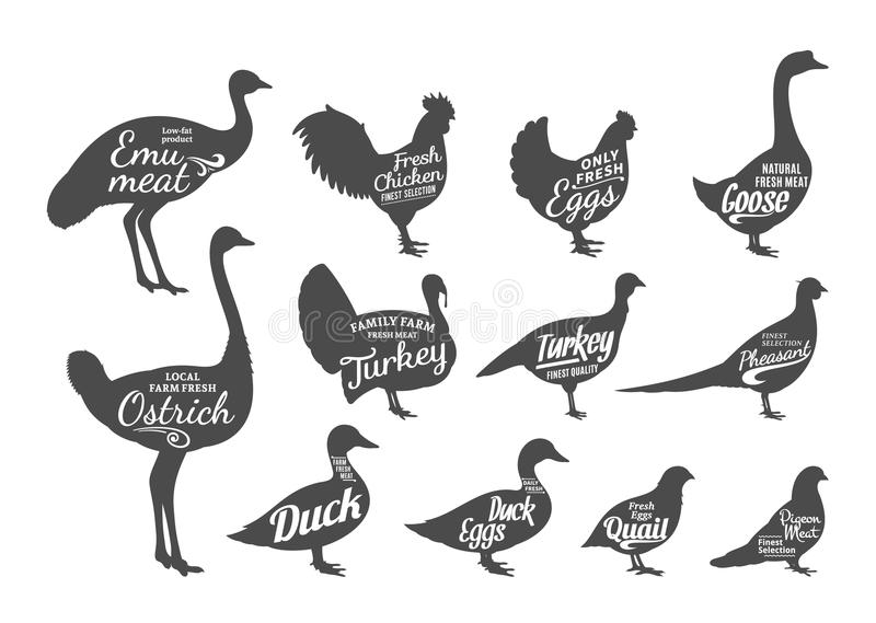 Poultry Silhouettes Collection, Butchery Labels Templates. Set of butchery labels templates. Poultry icons with sample text. Poultry silhouettes collection for royalty free illustration