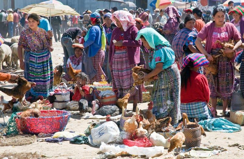 poultrymarket Гватемалы стоковая фотография