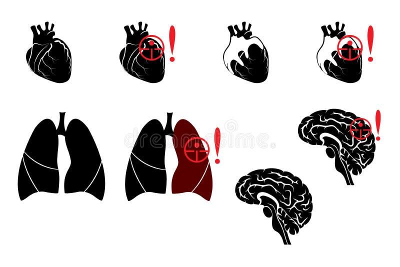 Poumons, coeur et cerveau illustration stock