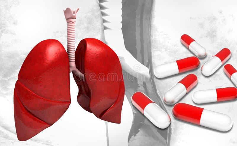 Poumons et capsules humains illustration stock