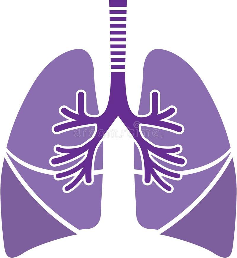 Poumons sains images stock