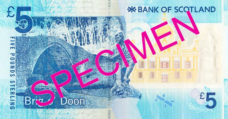 5 Pounds Sterling note issued by Bank of Scotland specimen obverse. Single 5 Pounds Sterling note issued by Bank of Scotland specimen obverse royalty free stock image