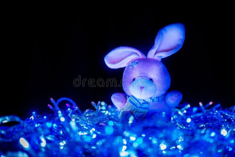 Poupée de lapin dans la lumière photographie stock libre de droits