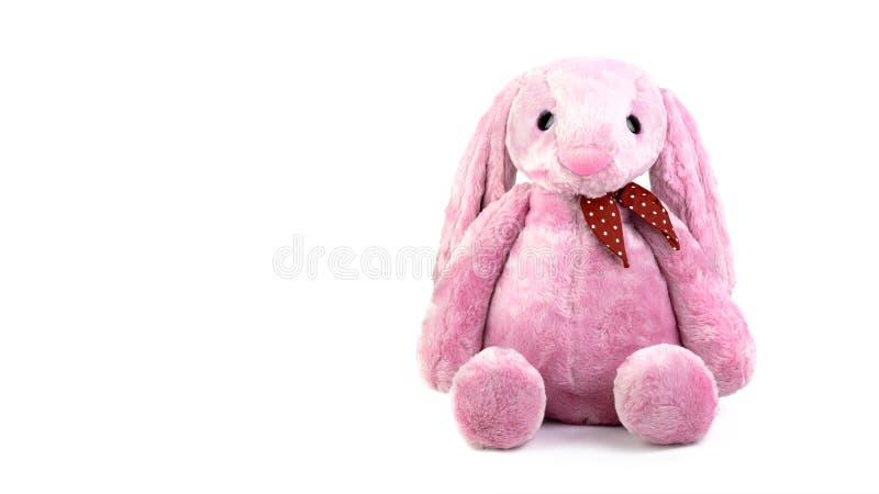 Poupée rose de lapin avec de grandes oreilles d'isolement sur le fond blanc Peluche mignonne et fourrure pelucheuse pour des enfa images stock