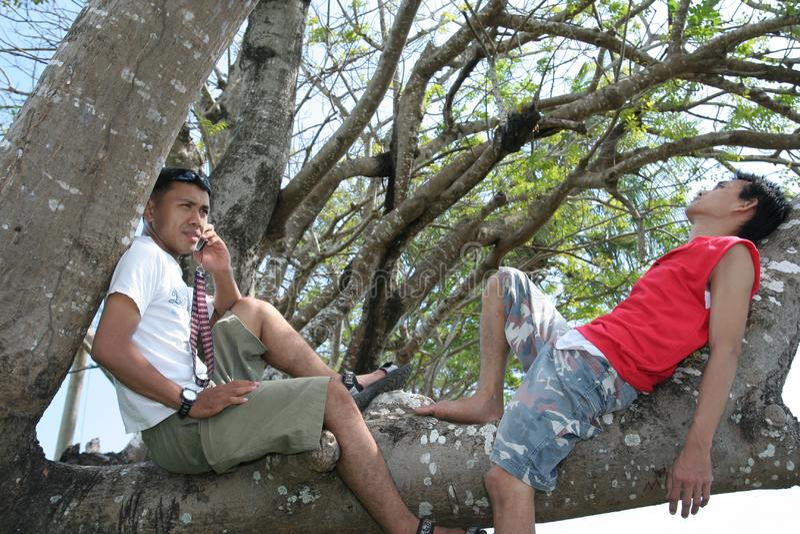 Pour deux hommes appréciez sur l arbre