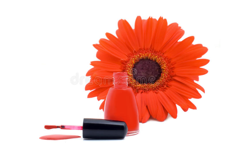 Download Poured red nail varnish stock photo. Image of gerber - 17759044