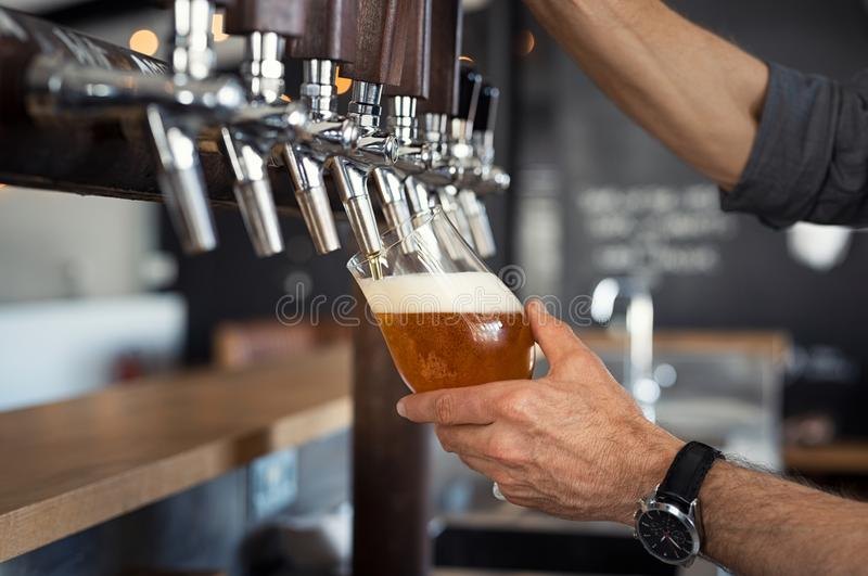 Pouring beer in glass. Hand of bartender pouring a large lager beer in tap. Closeup of hand serving beer in glass using tap. Close up of barman hand at beer tap royalty free stock photos