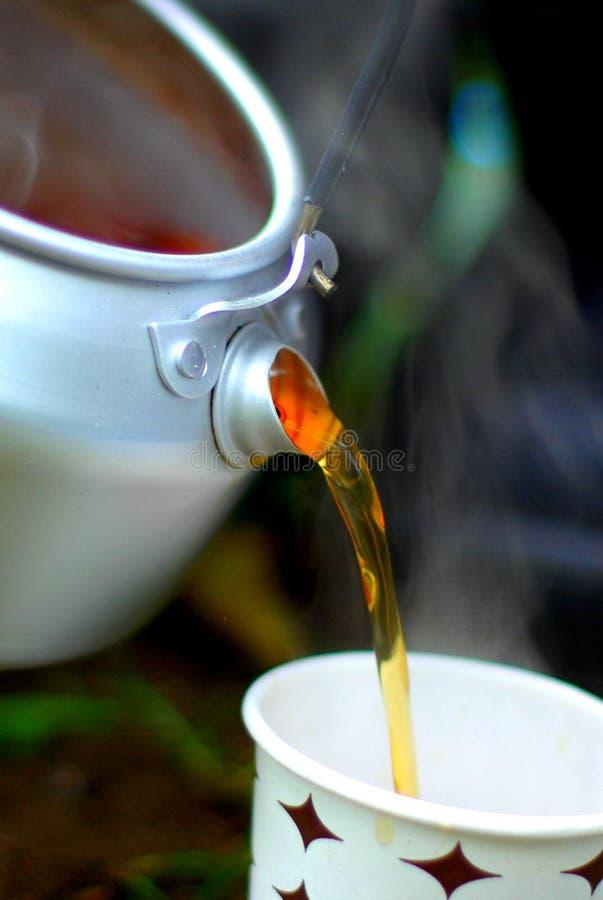 Pouring Breakfast Tea Free Public Domain Cc0 Image