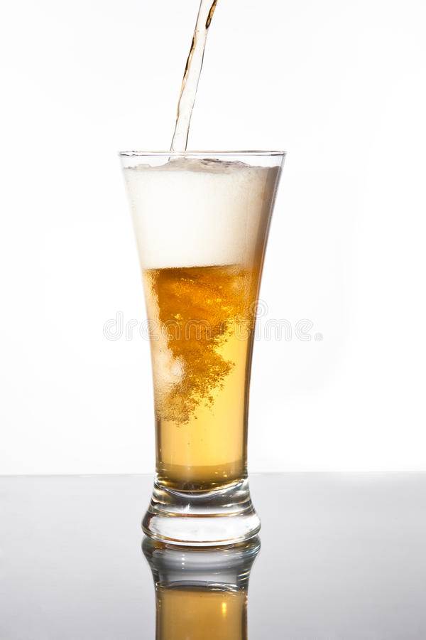 Pouring beer. Pouring fresh beer into a high glass, motion shot royalty free stock images