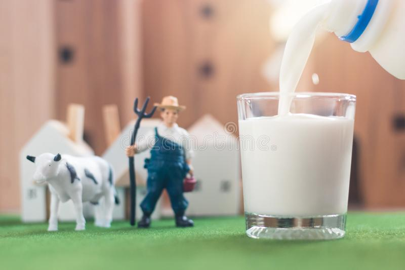 Pouring milk in glass with Miniature Farmer and cow figure model on Simulation grass. Wooden house in the background, agriculture concept stock photography