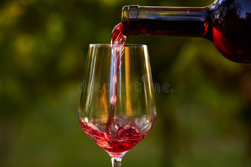 Pouring red wine into glass royalty free stock photography