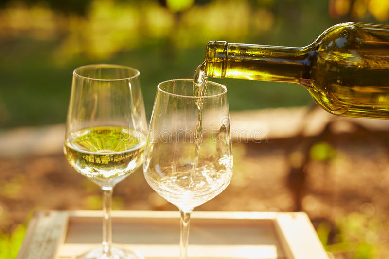Pouring white wine stock image